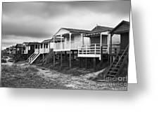 Beach Huts North Norfolk UK Greeting Card by John Edwards