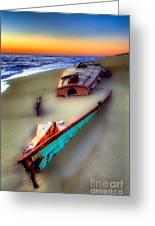 Beached Beauty Greeting Card by Dan Carmichael