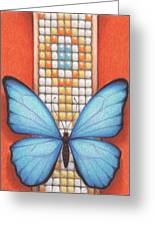 Beaded Morpho Greeting Card by Amy S Turner