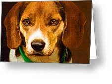 Beagle Hound Dog In Oil Greeting Card by Kathy Clark