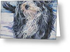 Bearded Collie in Snow Greeting Card by L A Shepard