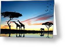 Beautiful  Animals In Safari Greeting Card by Boon Mee