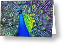 Beauty Whatever The Name Greeting Card by Jeff Kolker