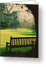 Bench Under A Tree Greeting Card by Jasna Buncic
