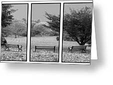 Bench View Triptic Greeting Card by Tom Romeo