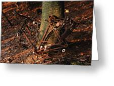 Bicycle Abandoned In A Forest Greeting Card by Bernard Jaubert