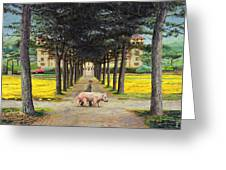 Big Pig - Pistoia -tuscany Greeting Card by Trevor Neal