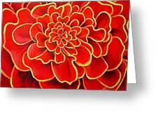 Big Red Flower Greeting Card by Geoff Greene