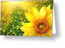 Big Yellow Sunflower  Greeting Card by Sandra Cunningham
