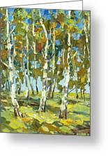 Birch Forest Greeting Card by Dmitry Spiros