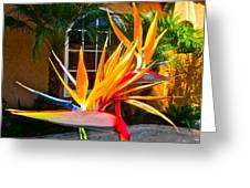 Birds In Paradise Greeting Card by Gwyn Newcombe