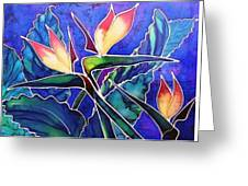 Birds Of Paradise II Greeting Card by Francine Dufour Jones