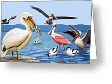 Birds With Strange Beaks Greeting Card by R B Davis