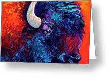 Bison Head Color Study II Greeting Card by Marion Rose