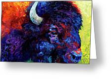 Bison Head Color Study IIi Greeting Card by Marion Rose