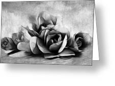 Black And White Is Beautiful Greeting Card by Georgiana Romanovna