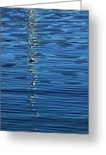 Black And White On Blue Greeting Card by Tom Vaughan