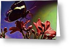 Black Butterfly With Oil Effect Greeting Card by Tom Prendergast