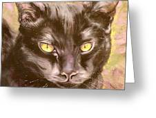 Black Pearl Greeting Card by Susan A Becker