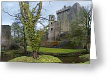 Blarney Castle 3 Greeting Card by Mike McGlothlen
