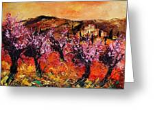 Blooming Cherry Trees Greeting Card by Pol Ledent