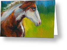 Blue-eyed Paint Horse Oil Painting Print Greeting Card by Svetlana Novikova
