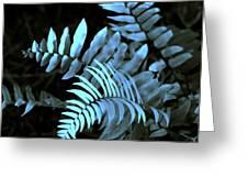 Blue Fern Greeting Card by Susanne Van Hulst