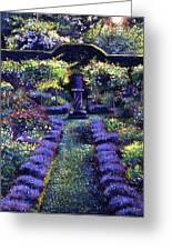 Blue Garden Sunset Greeting Card by David Lloyd Glover