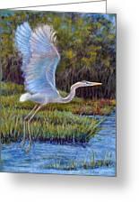 Blue Heron In Flight Greeting Card by Susan Jenkins