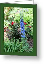 Blue Hollyhock And Red Roses Greeting Card by Corey Ford
