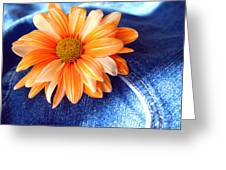 Blue Jeans And Daisies Greeting Card by Wendy Mogul