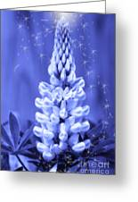 Blue Magic Sparkle Lupine  Greeting Card by Cathy  Beharriell