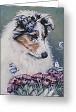 Blue Merle Collie Pup Greeting Card by Lee Ann Shepard