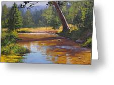 Blue Mountains Coxs River Greeting Card by Graham Gercken