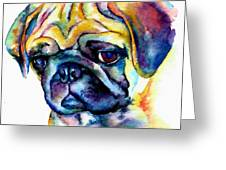 Blue Pug Greeting Card by Christy  Freeman