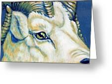 Blue Ram Greeting Card by Pat Burns