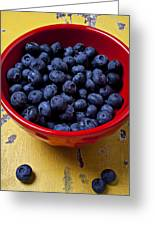 Blueberries In Red Bowl Greeting Card by Garry Gay
