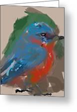 Bluebird Greeting Card by James Thomas