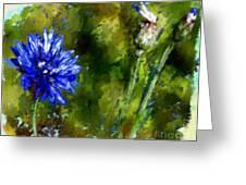Bluet Greeting Card by Daniela Ionesco