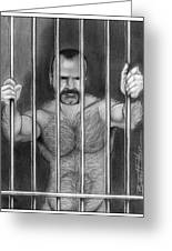 Bo Behind Bars Greeting Card by Brent  Marr