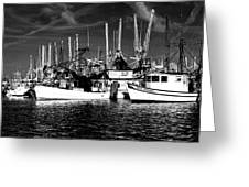 Boats Greeting Card by Alicia Morales