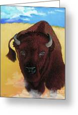 Born Of Thunder Greeting Card by Tracy L Teeter