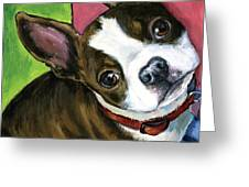 Boston Terrier Looking Up Greeting Card by Dottie Dracos