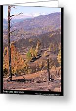 Boulder County Wildfire 5 Miles West Of Downtown Boulder Greeting Card by James BO  Insogna