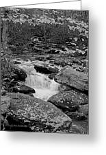 Boulder Creek Greeting Card by DigiArt Diaries by Vicky B Fuller