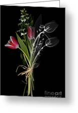 Bouquet X-ray Greeting Card by Ted Kinsman