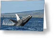 Breach Near Maui I Greeting Card by Dave Fleetham - Printscapes
