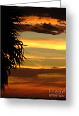 Breaking Dawn Greeting Card by Priscilla Richardson