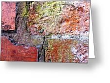 Brick Wall Greeting Card by Roberto Alamino