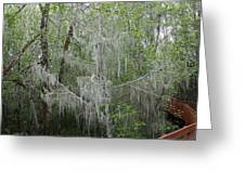 Bridal Veil Tree Greeting Card by Mark Cheney